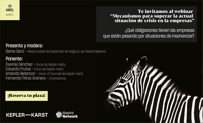WEBINAR: Mecanismos para superar la actual situación de crisis en las empresas